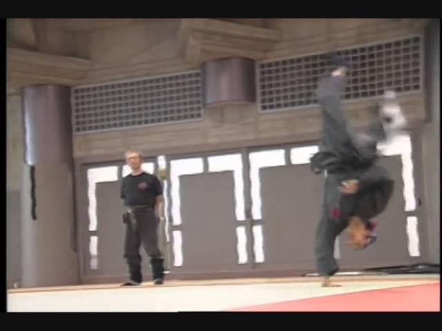Bujinkan Dublin - Bujinkan Shugyō Dōjō - Ukemi Taihenjutsu