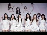 ★ 에이핑크 첫 단독 콘서트 개최! PINK PARADISE 기자회견 현장 ★