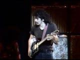 Santana - Black Magic Woman - 8181970 - Tanglewood (Official)