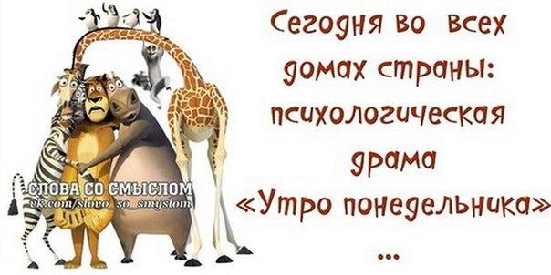 http://cs625419.vk.me/v625419086/26778/f6ZoAXEMtTE.jpg
