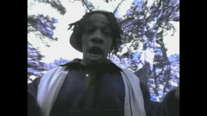 Da Bush Babees - Swing It   Official Video
