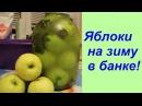 Яблоки на зиму в банке Apple Recipe In Season