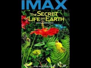 Тайна жизни на Земле Документальный, Флора и фауна