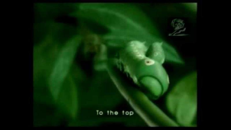 Японская реклама зеленого чая