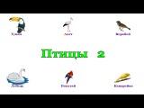 Птицы в картинках. Часть 2. Карточки Домана