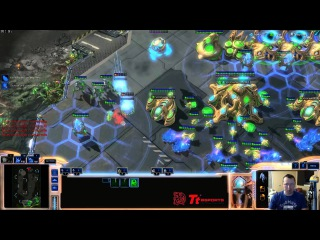 PvT expo and mass stalkers with blink