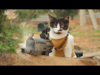 котята против зомби