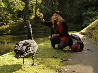 Орел и решка. Неизведанная Европа » Видео » Азорские острова. Португалия
