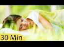 30 Minute Deep Sleep Music Calming Music Relaxing Music Soothing Music Calming Music ☯426B