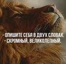 Роман Стаханов фото #8