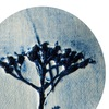 Тысячелистник - керамика ручной работы