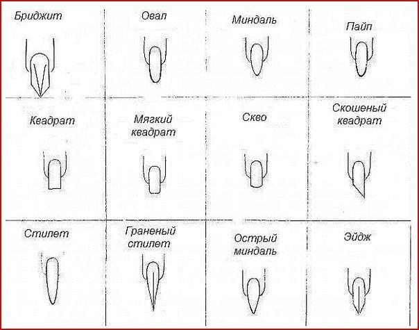 Ногти мягкий овал