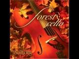Dan Gibson - Solitudes - Forest Cello - 05 The Fallen Leaves