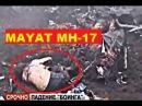 Video Rekaman Mayat Korban Pesawat MH-17 Setelah Terjatuh di Ukraina