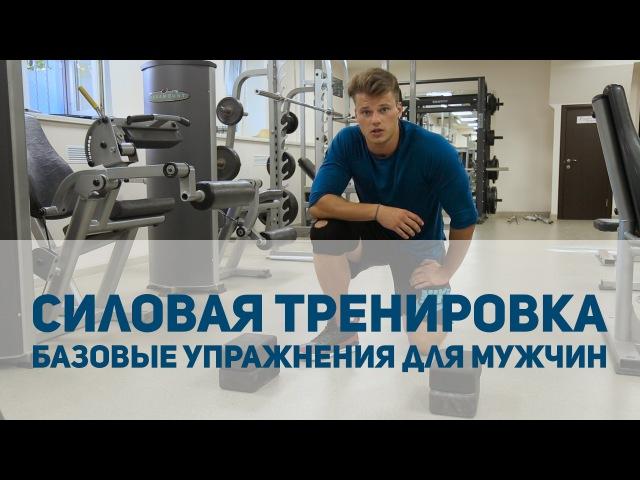 Силовая тренировка базовые упражнения для мужчин [Спортивный Бро]