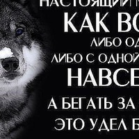 Анкета Тёма Черкасов