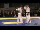 ITF Taekwon-Do Pre-Arranged Sparring