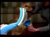 Pet Zoom (Пет Зум) щетка - расческа для вычесывания собак и кошек