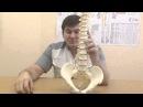 Метод лечения грыжи без операции. The method of treatment of a hernia without surgery