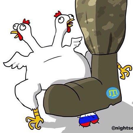 Проукраинские активисты рассказали представителям Совета Европы о нарушениях прав человека в оккупированном Крыму - Цензор.НЕТ 3359