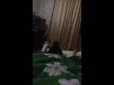 Шунечка зомбе