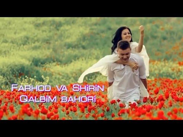 Farhod va Shirin - Qalbim bahori | Фарход ва Ширин - Калбим бахори