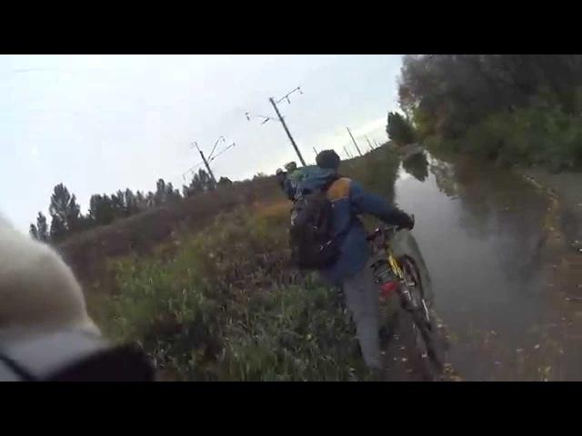 Осення велопрогулка по сосновому бору