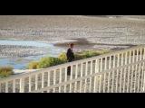 «Древо жизни» (2010): Трейлер (дублированный) / http://www.kinopoisk.ru/film/256408/