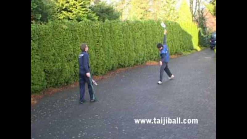 Taiji Bailong Ball - Multiplay