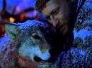 Ролик к книге Весьегонская волчица