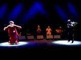 SINGULARES - La Repompa y su Cuadro Flamenco bailan por Jaleo