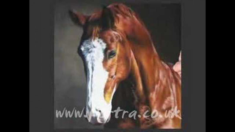 Speed Painting - horse portrait in pastel (Billy)