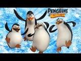 Что посмотреть на этой неделе - 26 ноября (Пингвины Мадагаскара, Несносные боссы 2, Легкие деньги)
