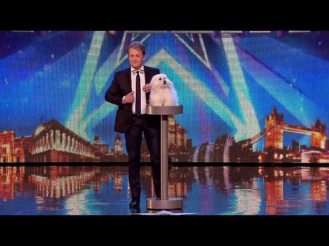 Konuşan köpek herkesi şaşkına çevirdi - Dailymotion video