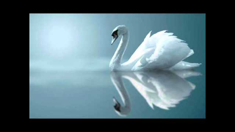 Claude Debussy : Clair de Lune, for Piano (Suite Bergamasque No. 3), L. 75/3
