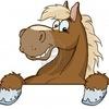 Перевозка лошадей.Попутный коневоз.Конеперевозки