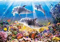 Puzzle-500. дельфины (в-51014), Castorland