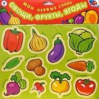 Мои первые слова: овощи, фрукты, ягоды, Дрофа-Медиа