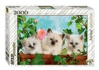"""Пазл """"котята с розой"""", 2000 элементов, Step Puzzle (Степ Пазл)"""
