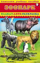 Комплект учебных пособий. зоопарк. плакат. лото. раскраска