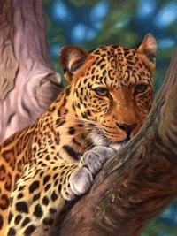 """Пазл """"леопард на дереве"""", 500 элементов, Ravensburger"""