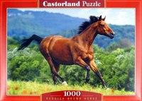 """Пазл-мозаика """"лошадь"""" (1000 элементов), Castorland"""