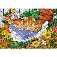 """Пазлы """"в мире животных. спящие котята"""", 35 элементов, Канц-Эксмо (Listoff, Unnika Land)"""