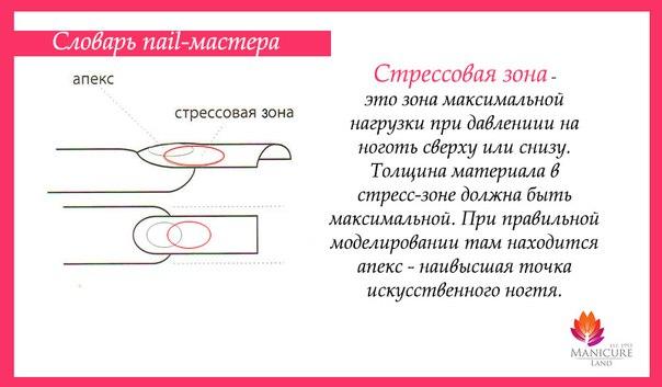 длины искусственного ногтя