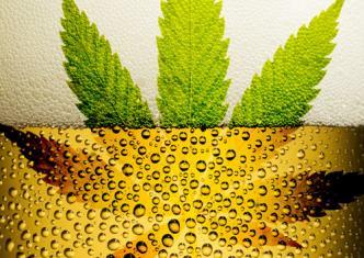 Пиво и марихуана влияние марихуаны на половую систему