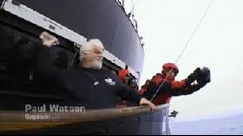 Whale Wars Season 6 Episode 2 FULL 720P