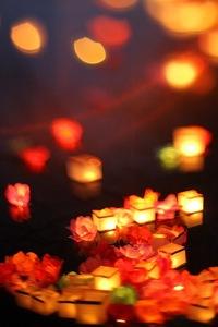 Фестиваль Водных фонариков 2016