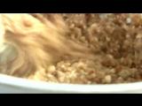 Гречневик с творогом_Сладкая запеканка из гречки рецепт _ VIKKAvideo