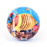 """Мяч пвх """"рыбки"""", 23 см, Затейники"""