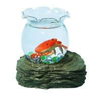 "Набор ""аквариум с 1 оранжевыс крабиком"", Amico"